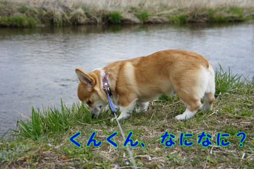 034_new