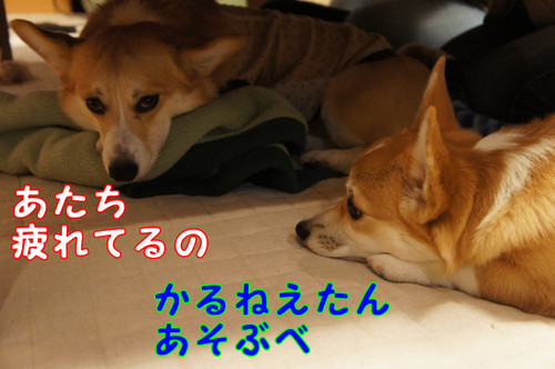 405_new