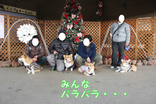003_new