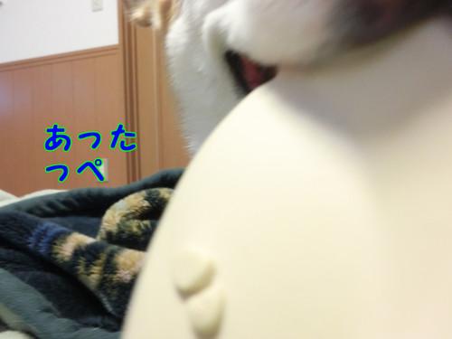 073_new