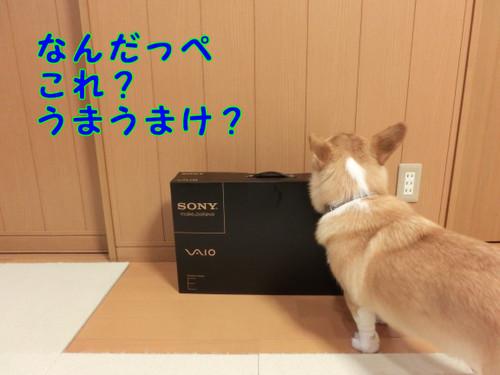 039_new