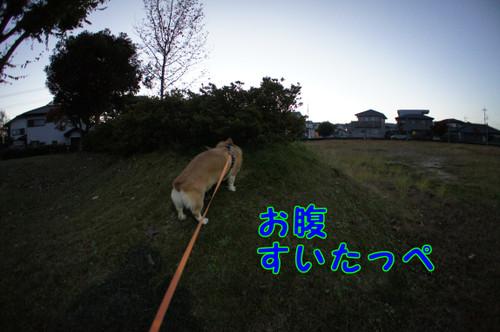 070_new