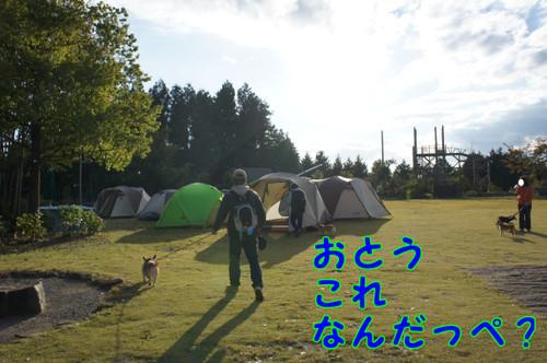 326_new