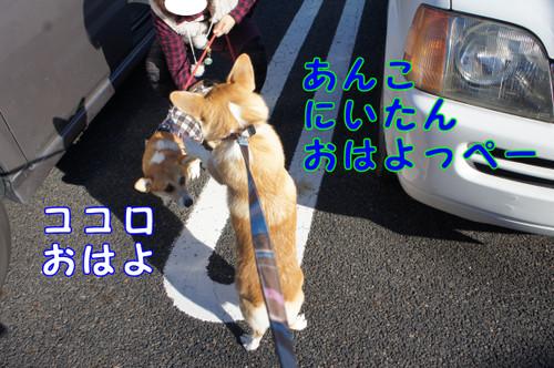 002_new_2