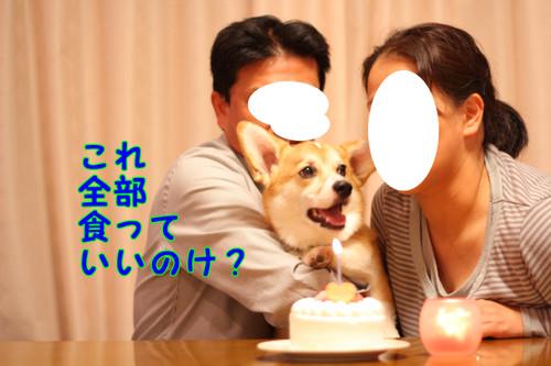 152_new