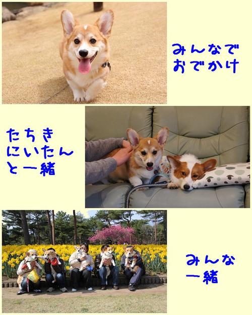 201204_new