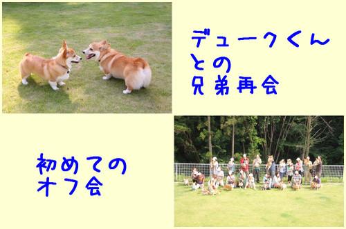 201206_new