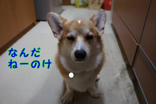 021_new
