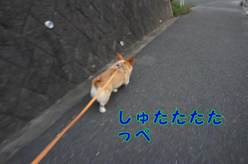 012_new