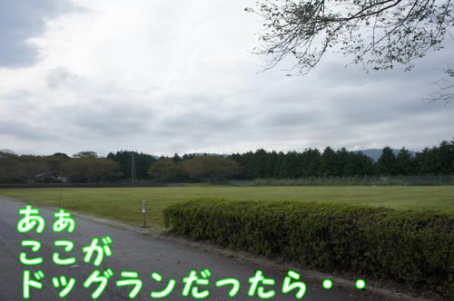 067_new_2