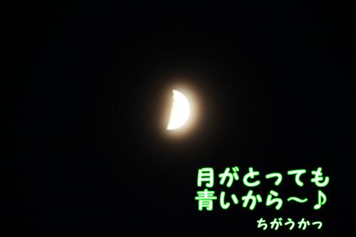 198_new