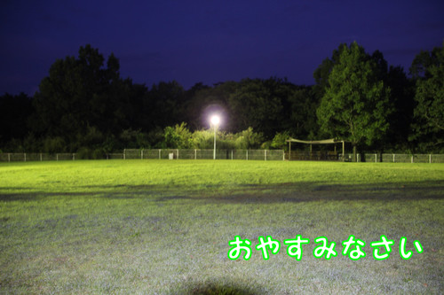 199_new