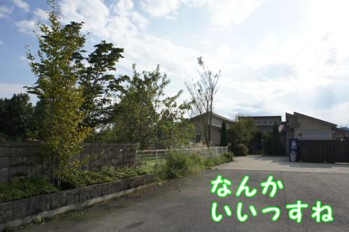 344_new