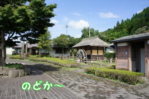 230_new