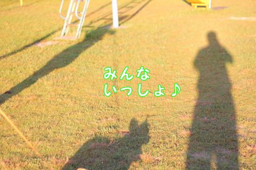 081_new