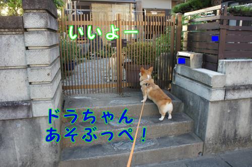 053_new_2