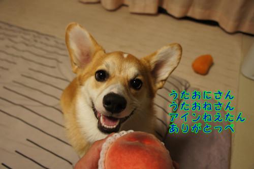 046_new_2