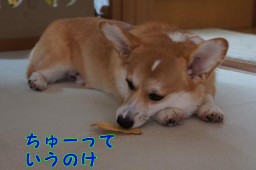 077_new