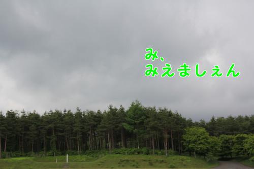 318_new