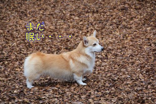 003_new_3