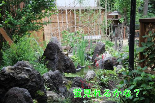 002_new_4