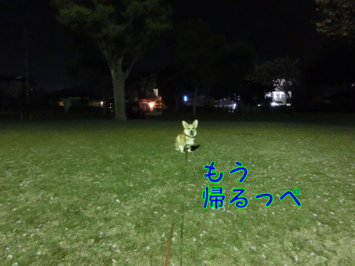 Cimg4088_new