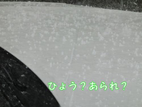 Cimg3967_new