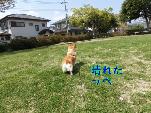 Cimg3891_new