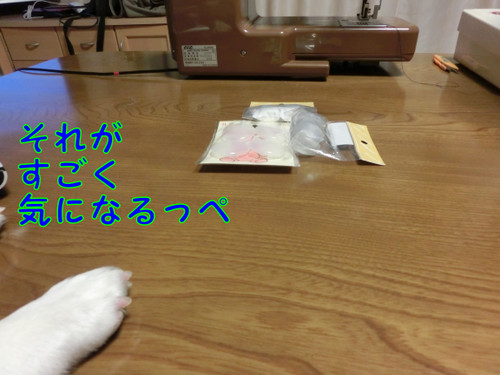 Cimg2699_new