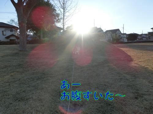 Cimg2206_new