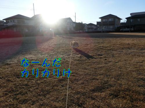 Cimg2250_new