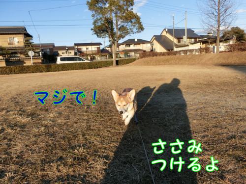 Cimg2283_new