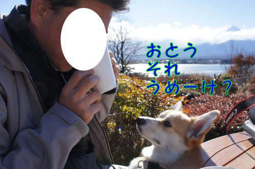 010_new