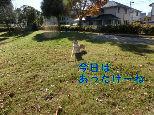 Cimg0706_new