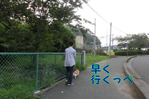 Cimg6679_new