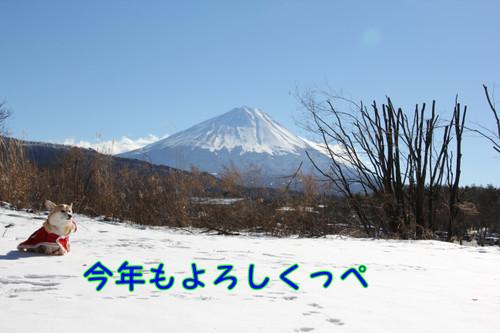 Img_7128_new