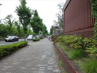 DSC01890-2014.jpg