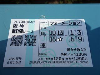 DSC02065-2014hn.jpg