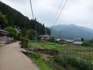 DSC02265-2014o.jpg