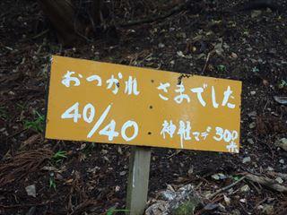 DSC03293-2014o.jpg