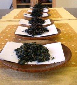 台湾茶会写真