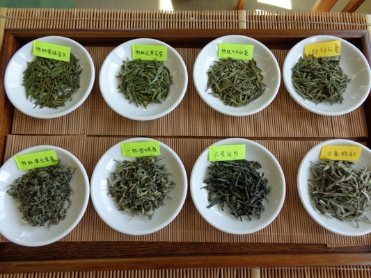 2014年春緑茶会