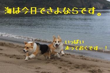 海遊びおさめ