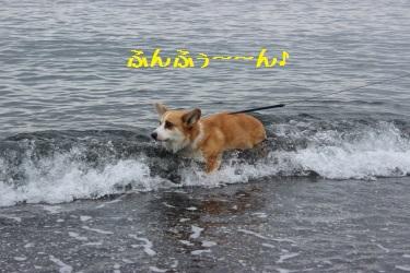 波に乗ってます。