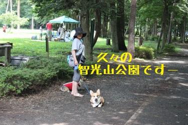 智光山公園だよ。