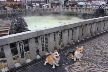 草津に行ったんだよ。