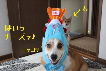 あっぱれ麦さん☆