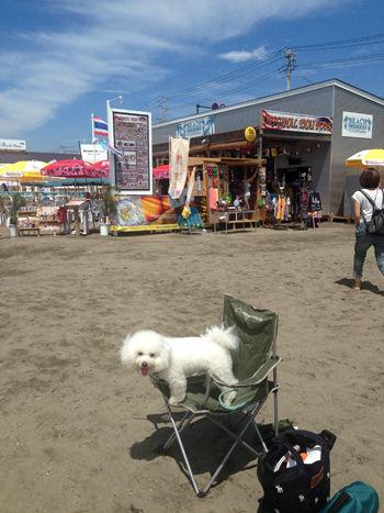 写真 2014-08-02 10 35 39
