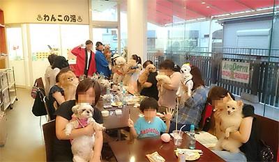 写真 2014-08-26 7 36 25のコピー