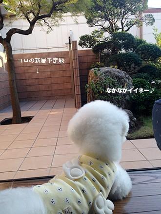 写真 2014-09-13 16 51 59(1)